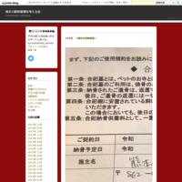 熊本県の迷子犬猫 譲渡犬猫情報 - 熊本の動物愛護を考える会