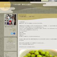 春色のお弁当♬ - かぐやの! TMO吉原 勝手に応援団!!。。。