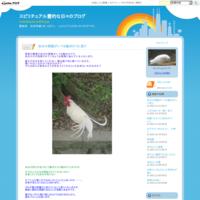 御礼 - スピリチュアル霊的な日々のブログ    霊能者 松林秀豪