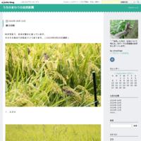 春の庭 - うちのまわりの自然新聞