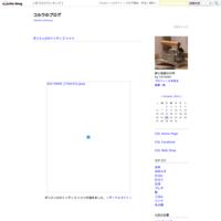 コルウの東京オーダー会 - コルウのブログ