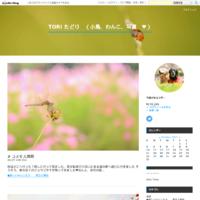 # 渓谷のカワガラス、キセキレイ - TORI たどり (小鳥、わんこ、写真 ♥)