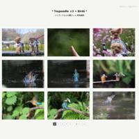 シジュウカラさん - * Toypoodle  x3 + Birds *