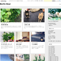 ひょこりのキョトン顔 - Berlin Bear