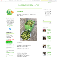 夏場に注意「痛風」 - ライフ薬局(茨城県神栖市)ウェブログ
