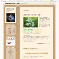 在日韓国人の証言 - 創価の森の小さな家<別館>