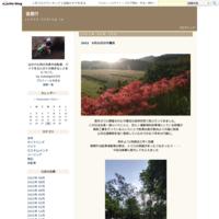 SPD-SLとSPD - 仮想行