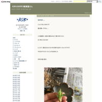 焼きあがってたもの≪鶴≫ - ASKの手作り雑貨屋さん
