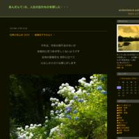 四季の花山歩 2019~ 紫陽花アラカルト ~ - あんだんて♪の、人生の忘れものを探しに・・・