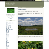 埼玉県境歩き(平野部)計画編 - 山の高みへ、森の深みへ