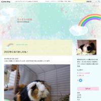 ぷいぷい目の診察① - モルモルの記録