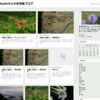 紅梅 (撮影日:2019/1/5) - toshiさんのお気楽ブログ