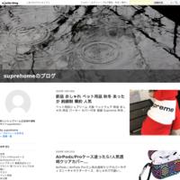 新作 Dior ディオール iphone12ケース 全機種対応 - suprehomeのブログ