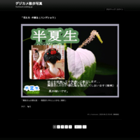 「花たち - 柏葉紫陽花(カシワバアジサイ)」 - デジカメ散歩写真