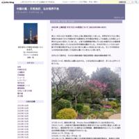 中国の外国人永久居留証の申請 - 中国の風 - 天気良好、なお視界不良