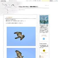 関ヶ原ウォーランドの写真で作った動画 - P-days Bird Blog (徳島の野鳥たち)