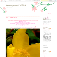 10月のボランティア - Aromapureのつぶやき