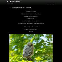 ヤツガシラ - 新 鳥さんと遊ぼう