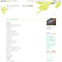 10/22 切花入荷 品種詳細 - ビックフラワー 仕入れ情報