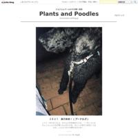 とうとう夢にでてきたよ。。。 - Plants and Poodles