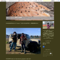 ルアーパスあれこれfalconry lure training -pere x merlin Pelu was attacked by black kite - 新米ファルコナー(鷹匠)の随想録