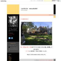 ペンデルトン&ビーチ・ボーイズTシャツ! - ショウザンビル mecca BLOG!!