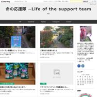 29年度上半期会計報告 - 命の応援隊   ~Life of the support team~