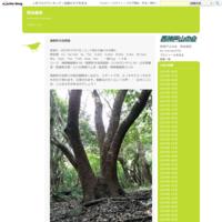 六甲瑞宝寺公園 - 例会報告
