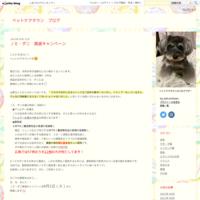 ちゃこっと紹介( *´艸`) - ペットケアタウン ブログ