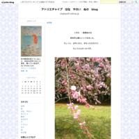 木下沢梅林 - アトリエチャイブ はな やさい ぬの blog