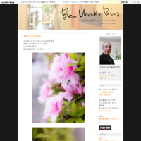 生駒の家Ⅱ別荘210318 - 一級建築士事務所ベンワークスのブログ