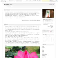 垂直感は脱力して得られる 2019,11 - 滝川なおみ ブログ