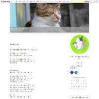 センターとの連携について - 飼い主のいない猫たち