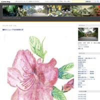 茎ほうじ茶ティーバッグ - 鈴桃