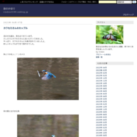 クロスジギンヤンマ - 旅のかほり