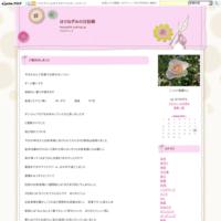 パンジーの種まき&線香花火 - はりねずみの日記帳