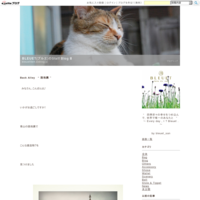 "Bleuet Photo Exhibition♫ ""ブルエ写真展♫ - BLEUET(ブルエ)のStaff Blog Ⅱ"