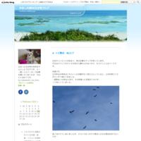 オオルリボシヤンマの産卵警護Byヒナ - 仲良し夫婦DE生き物ブログ