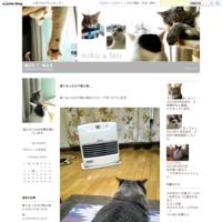 結膜炎 - 猫ぶろぐ・禄&天
