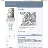 コーマック・マッカーシー『越境』の読書記録3 - ヒロカズのイラスト研究所