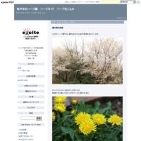四季の庭にアサギマダラが遊びに来ました - 神戸布引ハーブ園 ハーブガイド ハーブ花ごよみ