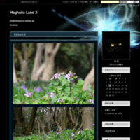 ヤマガラ🗻コウヤボウキ - Magnolia Lane 2