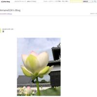 河津桜 - Amane026's Blog