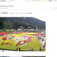 マスク電車ヤエザクラハボタン - Hanareokan's Blog