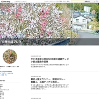 未記入夏から秋の花 - 日常生活ブログ