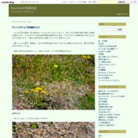 ゼフを探してプラプラ2019-3 - Ryochanの写真日記