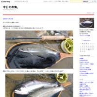 風 - 今日のお魚。