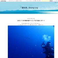 2021.9.13 ジンベエザメを会いに行こう@波左間 - 「潜水湾」Diving Blog