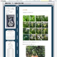 猫柄ポーチ - 趣味の作品 アート盆栽&手芸&写真