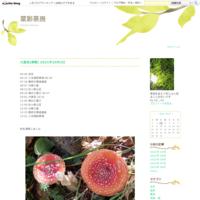 湯俣温泉 (8月16日) 2/2 - 菜彩茶房